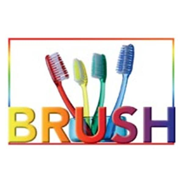 laser 4 up recall cards brush 4 brushes 8 5 in x 11 in 200 pk