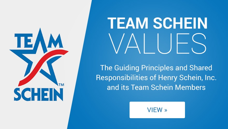 Team Schein Values
